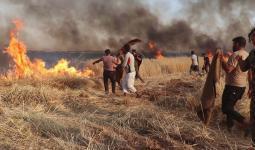 حرق أراضي زراعية في سوريا - أرشيف