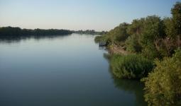 نهر الفرات في دير الزور