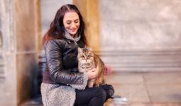 قطة آيا صوفيا