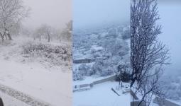 تساقط الثلوج في الشمال السوري 20 /1/ 2021