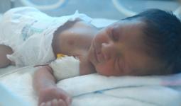 مشفى شفق الطفل خالد - إدلب - آرام