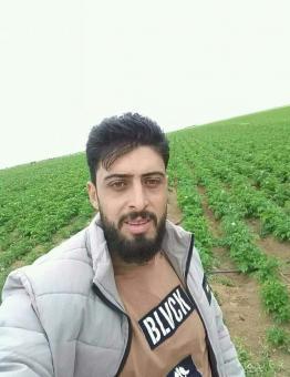 محمد جباوي
