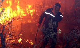 حرائق الجزائر (صورة أرشيفية)
