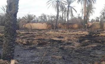آثار الحرائق في بساتين تدمر - ناشطون