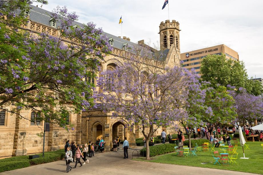 جامعة أديلايد في أستراليا